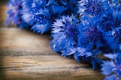 Cornflowers over wood. En background. Wild blue flowers stock image