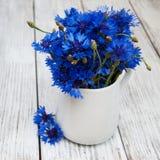Cornflowers in vase Stock Image