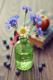 Cornflowers in vintage bottle Royalty Free Stock Image