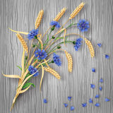 Cornflowers and wheat ears bunch on wood background Stock Photo