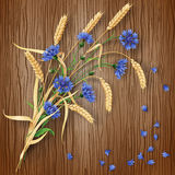 Cornflowers and wheat ears on wood background Royalty Free Stock Photography