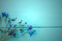 Cornflowers on wooden background Stock Image