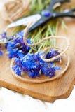 Cornflowers z nożycami i dratwą Obrazy Stock