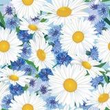 抽象漩涡花春黄菊和cornflowerseamless纹理 图库摄影