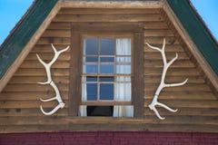 Corni degli alci sulla cabina di ceppo Fotografia Stock Libera da Diritti