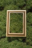 Cornice di legno in bianco su fondo verde Fotografia Stock