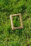 Cornice di legno in bianco su fondo verde Fotografie Stock