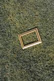 Cornice di legno in bianco su fondo verde Fotografie Stock Libere da Diritti