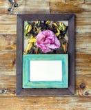 cornici e fiori e foglie Fotografia Stock