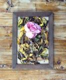 cornici e fiori e foglie Immagini Stock