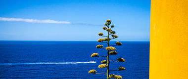 Corniglia, Cinque Terre, Ιταλία - η Μεσόγειος Στοκ εικόνα με δικαίωμα ελεύθερης χρήσης