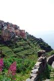 Corniglia-Cinque Terre Stock Photos