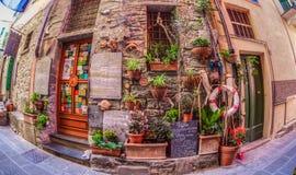 Corniglia, Cinque Terre, Italië - de Tuin van de Muur stock afbeelding