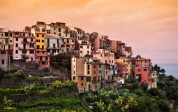 Corniglia, Cinque Terre, Italien. stockfotos