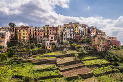 Corniglia Cinque Terre Italy Fotografie Stock Libere da Diritti