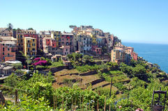 Corniglia. Picture of a part of Corniglia,one of the 5 village in Cinque-terre,Italy Royalty Free Stock Photos