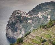 Corniglia village Royalty Free Stock Photos