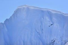 Cornisa de la nieve Foto de archivo libre de regalías