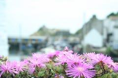 cornish рыбацкий поселок Стоковые Изображения