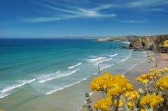 Cornish Beach Landscape Royalty Free Stock Images