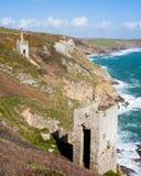 Cornish bryter på klipporna arkivbilder