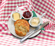 Cornish clotted cream tea. Photo of a delicious mouthwatering cornish clotted cream tea served on a gingham tablecloth Royalty Free Stock Image