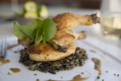 Cornish Game Hen with Wild Rice and Au Jus Royalty Free Stock Image