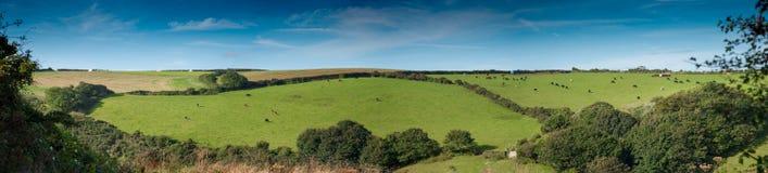 Cornish panorama Stock Photos
