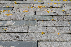 Cornish slate roof tiles Stock Images