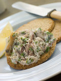 Cornish Smoked Mackerel Pate with Oatmeal Biscuits Royalty Free Stock Photography