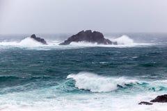 Corniska stormar på udde Cornwall Royaltyfri Fotografi