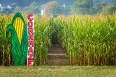 Cornmaze在玉米田 免版税库存照片