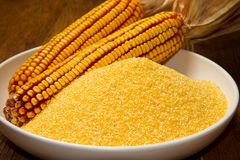 Cornmeal Stock Photo