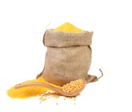 Cornmeal in bag with spoon. Royalty Free Stock Images