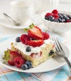 Cornmeal-berry sheet cake Stock Image