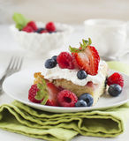 Cornmeal-berry sheet cake Royalty Free Stock Photo