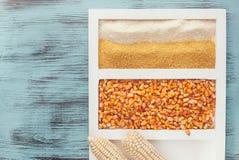 Cornmeal, corn seeds and corn cob Stock Image