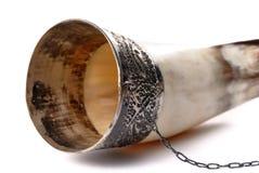 Corno bevente isolato su bianco Fotografia Stock Libera da Diritti