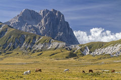 Corno Grande in Abruzzo Royalty Free Stock Photography