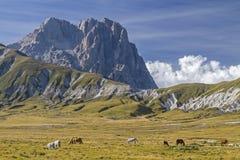 Corno grande nell'Abruzzo Fotografia Stock Libera da Diritti