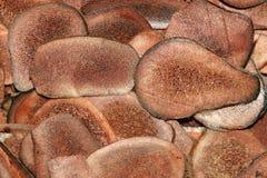 Corno Pilose Fotografia Stock