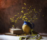 Cornouillers de Flowerimg Photo stock