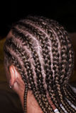 Cornrow Braids - Rear View. Male with cornrow braids Stock Images
