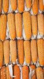 Corns высушенные желтым цветом стена текстуры кирпича предпосылки старая Стоковые Изображения RF