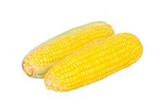 2 corns изолированного на белизне Стоковое Изображение