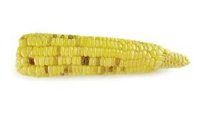 Corns изолированные на белой предпосылке Стоковые Фото