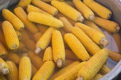 Corns кипеть outdoors в котле металла Еды Cookout vegetable Свежая органическая, здоровая закуска Стоковые Фотографии RF
