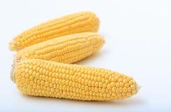 Corns на белой предпосылке Стоковое фото RF
