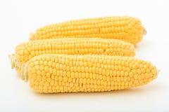 Corns на белой предпосылке Стоковые Фотографии RF