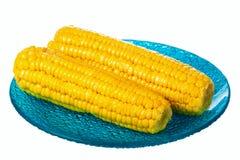 Corns на голубой плите Стоковая Фотография RF